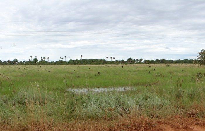Colombia en paisajes, este es el llano Casanareño