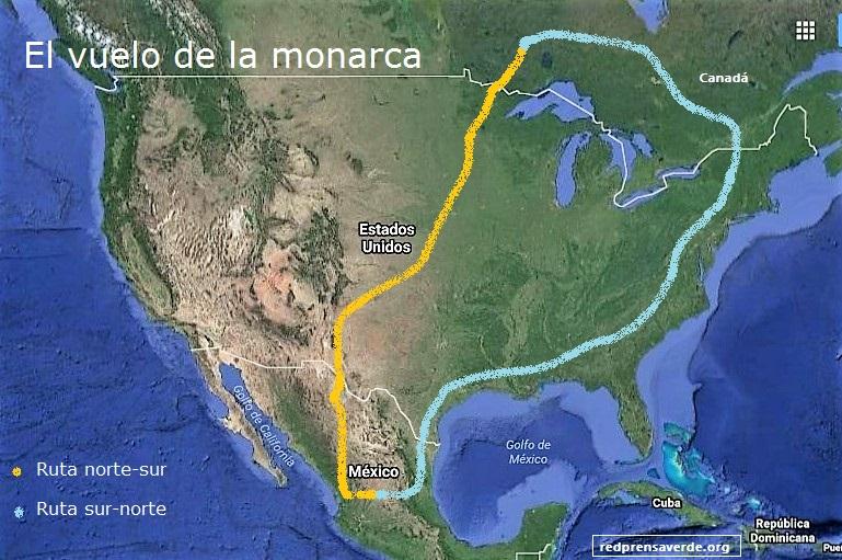 ruta-monarca
