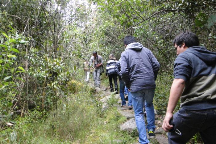 Ecología y Periodismo, este viernes en la Universidad Javeriana