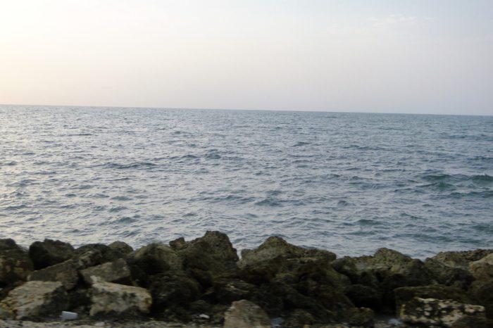 Instituciones de mar piden consenso en reforma del SINA