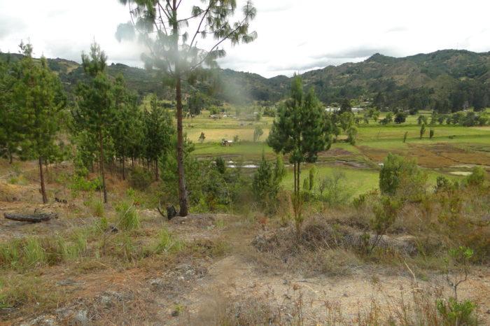 Las cifras del cambio climático en Colombia