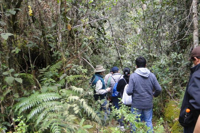 Boyacá le apuesta a estudiar su biodiversidad