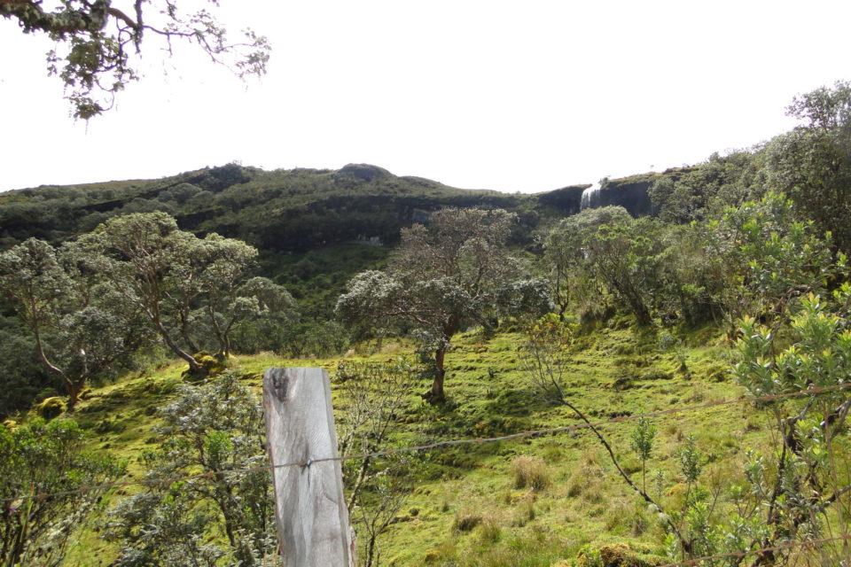 Procuraduría pide a Unesco declarar los páramos como Patrimonio Natural de la Humanidad