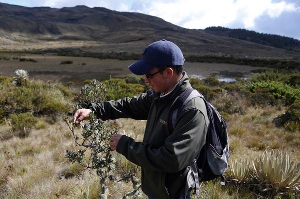 Al páramo de Iguaque será la primera expedición científica BoyacáBio